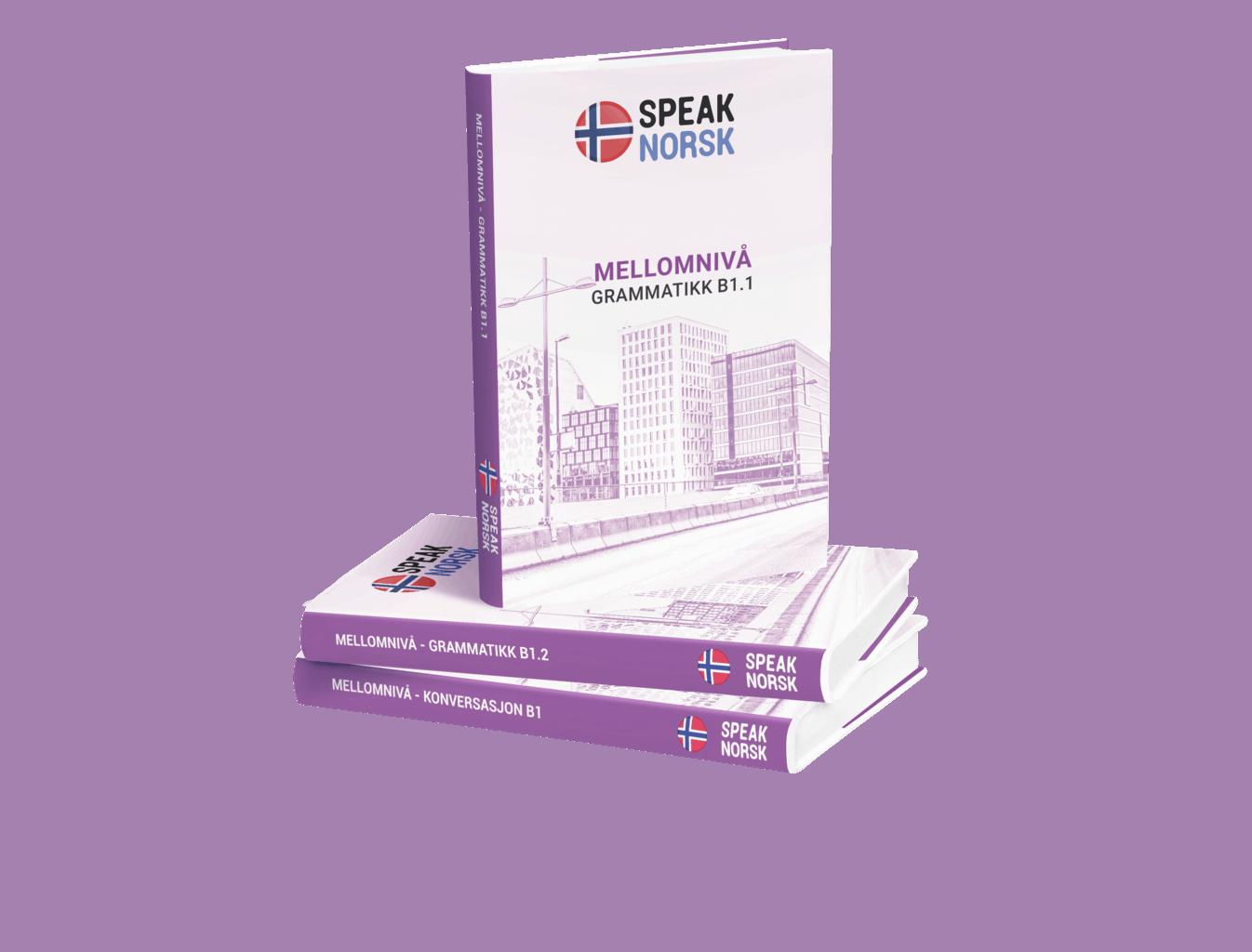 SpeakNorsk_booksB1_pile_flat fixed gram b1